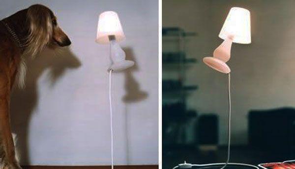 flap-lamp