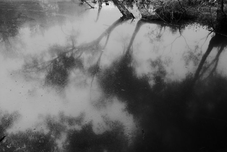 14. Sandy Creek (1998)