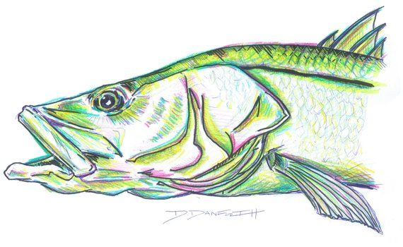 Snook Art In 2019 Products Art Fish Art Art Pieces