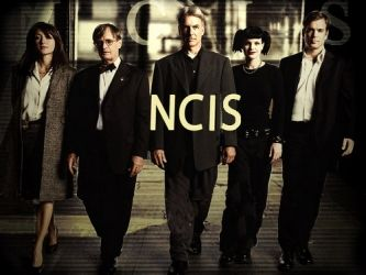 I love NCIS seasons 1 & 2!