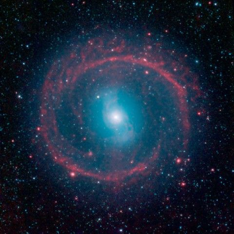 A new image from NASA's Spitzer Space Telescope, taken in infrared light, shows where the action is taking place in galaxy NGC 1291. (NASA/JPL-Caltech)