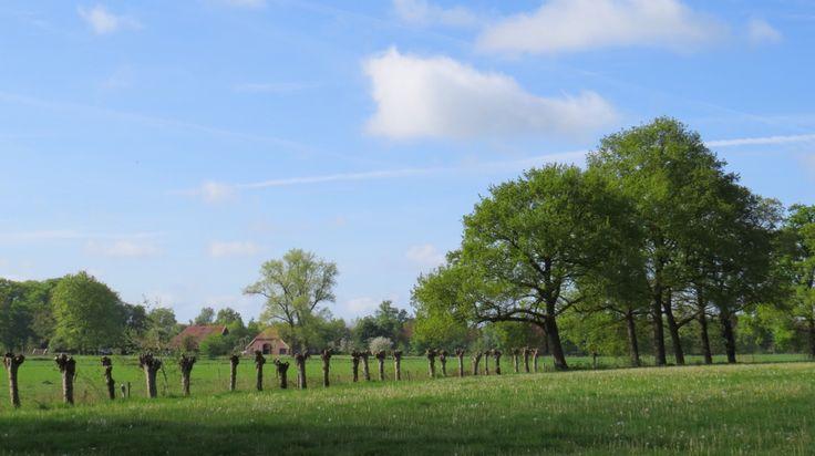 2015-05-10 Het mooie landschap tussen Westerflier en Diepenheim