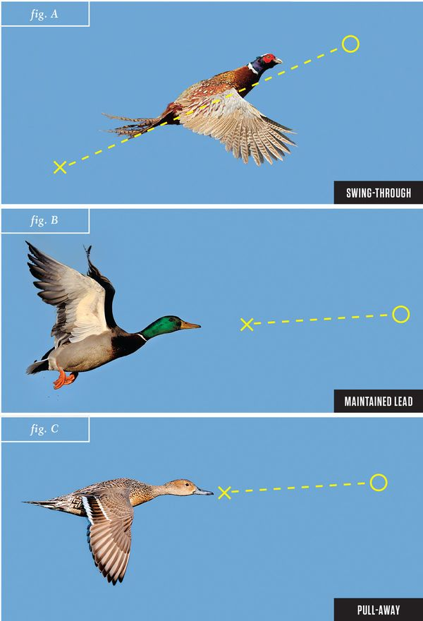 shotgun techniques, wingshooting, duck hunting, shooting ducks, leads, skeet shooting