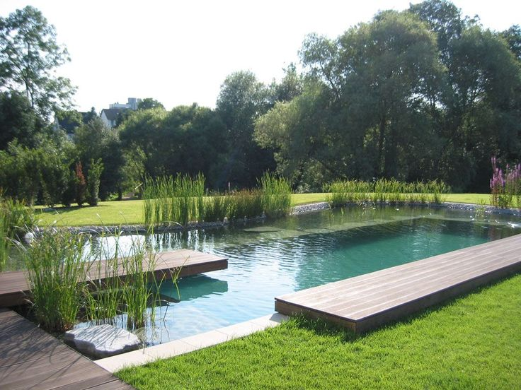 Een droom van een natuurlijke zwemvijver