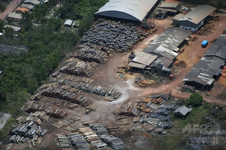 ブラジル・パラ(Para)州のアマゾン(Amazon)熱帯雨林で行われている違法伐採の現場の上空から撮影した、レインボー(Rainbow)と呼ばれる製材所(2014年10月14日撮影)。(c)AFP/Raphael Alves ▼16Oct2014AFP|上空から見たアマゾンの違法伐採現場 http://www.afpbb.com/articles/-/3029095 #Illegal_logging #Para_Brazil
