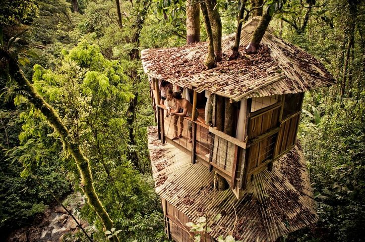 If you want to stay in a REAL TREEHOUSE, then opt for Finca Bellavista! | 12 Places To Stay In Costa Rica You Won't Believe Actually Exist