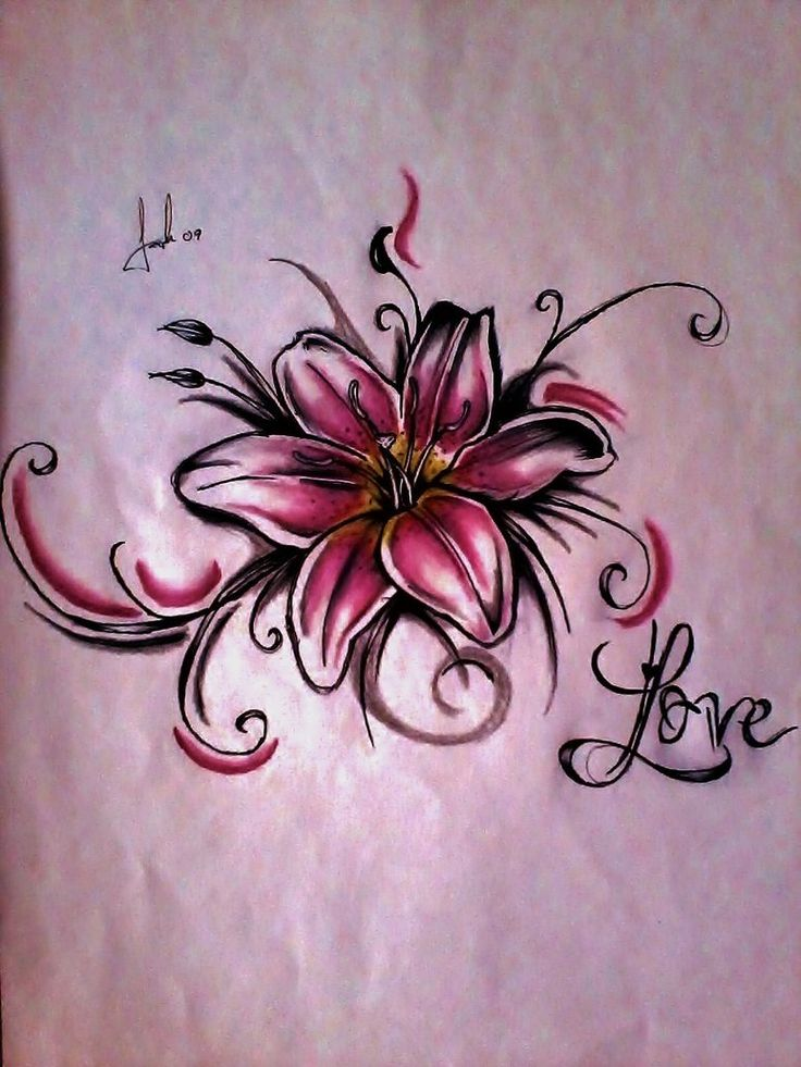 pictures of lily tattoos | Pink Lily Flower Tattoo Art