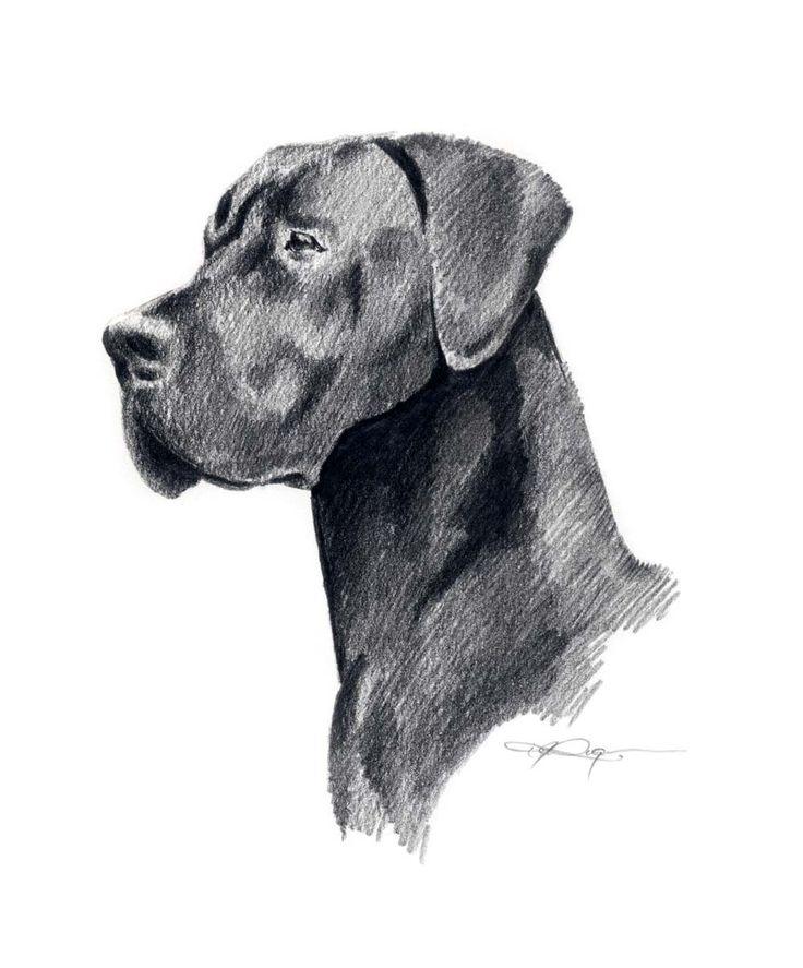 BLACK GREAT DANE Dog Art Print Signed by Artist D J Rogers. $12.50, via Etsy.
