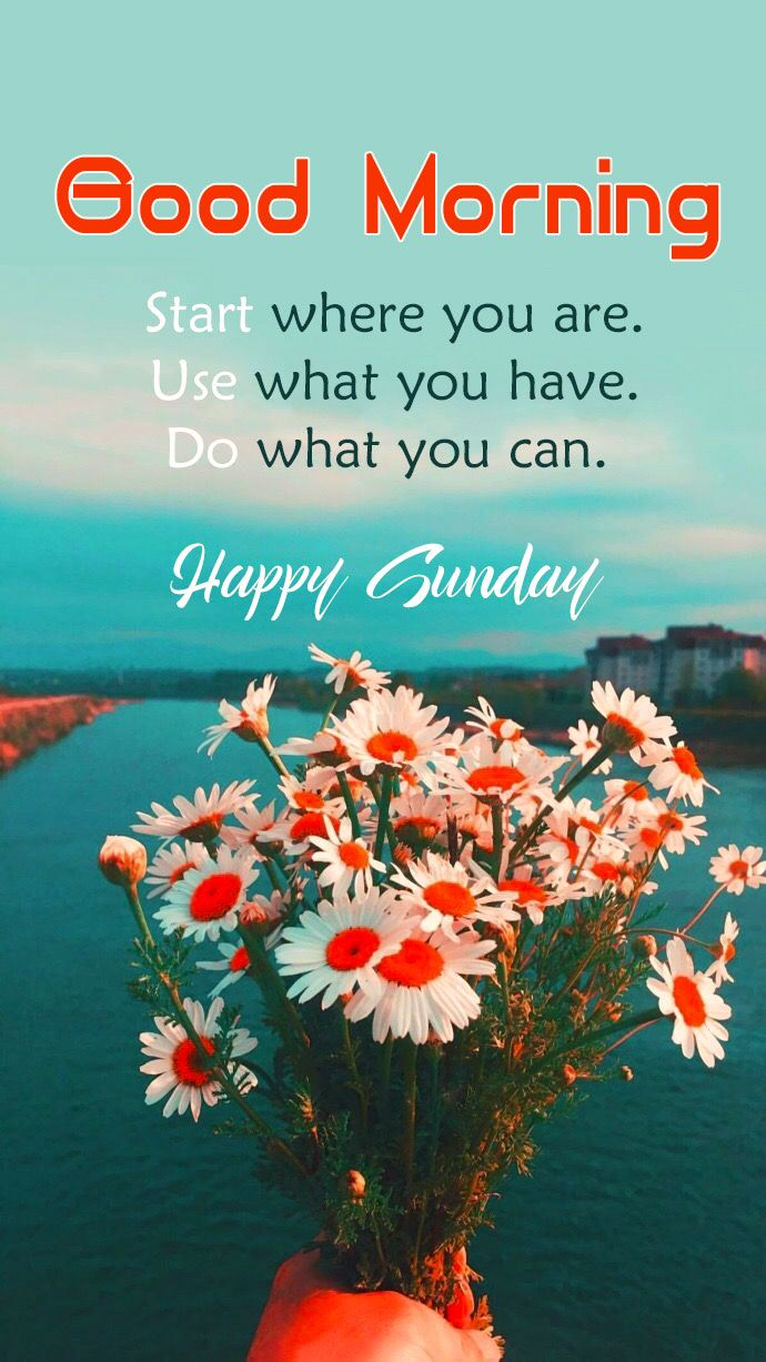 Good Morning Sunday Wishes Images Download | Sunday morning wishes, Happy  sunday quotes, Sunday wishes images