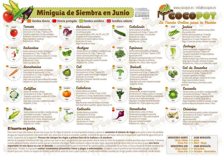 Actualizada la Miniguía de Siembra en junio para tu #huertourbano con más variedades de #semillas, no te la pierdas, es gratis!