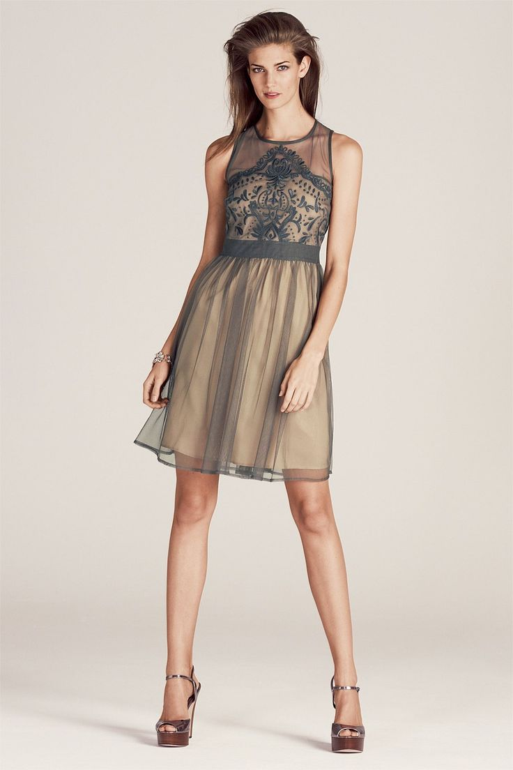 Next Embroidered Mesh Dress - EziBuy Australia. Soft and feminine. This beautiful mesh dress will draw the limelight #fashion #thebrandstore #style