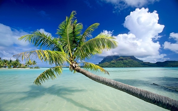 Best All Inclusive Resorts Vacation Packages and Cheap All Inclusive Holidays. Lowest prices, best vacations!