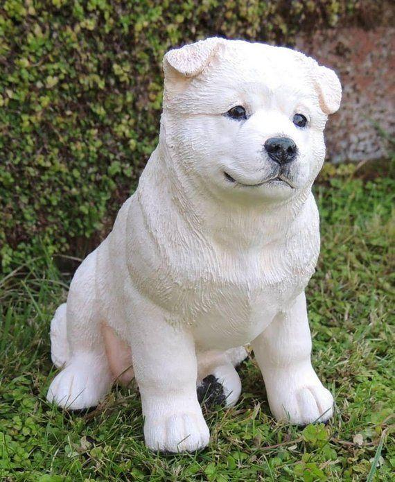 White American Akita Puppy Dog Sculpture Akita Puppies Dog