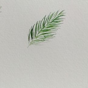 How to paint pine needles. Is that what they're called? It was a little difficult to paint this because i had to make sure that my hand wasn't blocking the camera I usually start with a light green color as base. Then, I add more thin strokes with a different shade of green. My last strokes are the darkest. It makes my painting more defined You can change the the direction per stroke to make it look more natural The video was cut because I ran out of time hihi Paint: @winsorand...