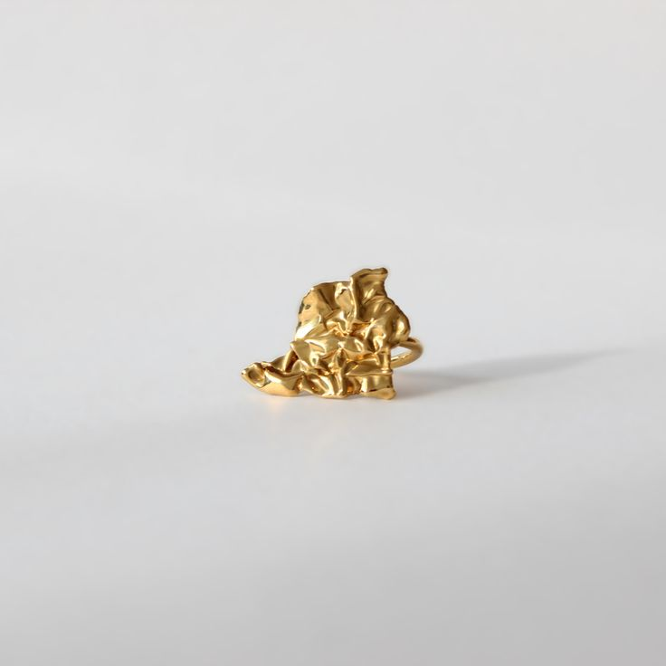 Gold ring | $130