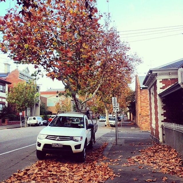 Almost 6 months in beautiful, leafy #Fitzroy for us! It's been great and the #autumn #leaves and colours have taken our surroundings to a new level!