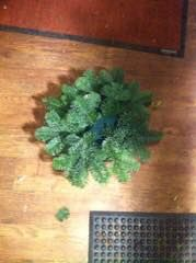 feste grønt på dekorasjoner
