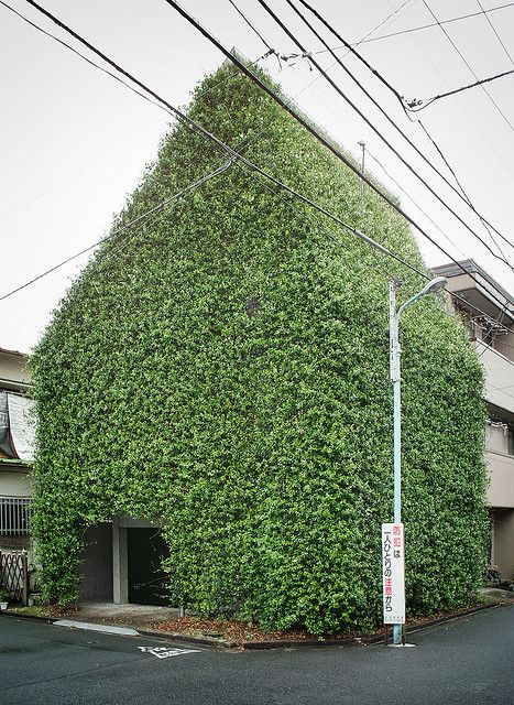 GREEN house in Tokyo