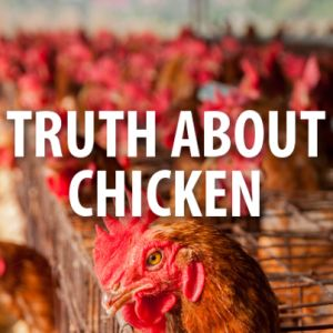 Dr Oz: Dirty Chicken, Zilmax Drug & Tyson Foods Vertical Integration.   Tips:  Buy at the butcher counter – Ask about how it is produced     Buy it last – This keeps it cooler during transit     Wrap in separate bag – Avoid cross-contamination     Cook to 165 F – Keep your kitchen clean, and don't wash chicken before cooking