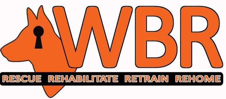 Working Breed Rehab - Box Hill NSW Australia - Website
