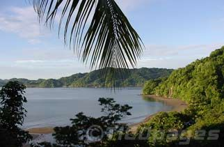 My newest client is a resort property in Costa Rica . . . I smell a tropical trip in my future!