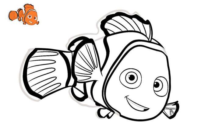 Nemo Da Colorare Disegni Disegni Da Colorare Pesce Pagliaccio
