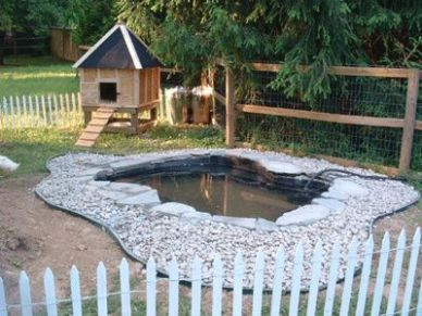 25 best ideas about duck house on pinterest duck pond for Can ducks and chickens share a coop