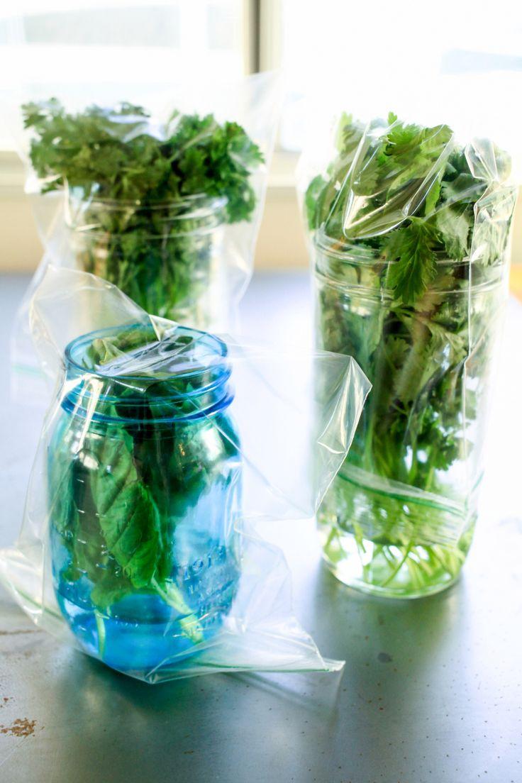 o Store Fresh Herbs like this in fridge