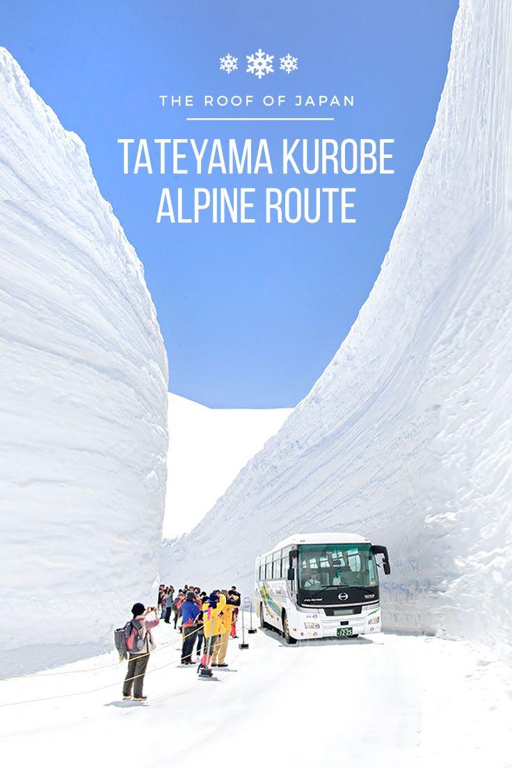 The Roof of Japan: Tateyama Kurobe Alpine Route! (Travel Guide)