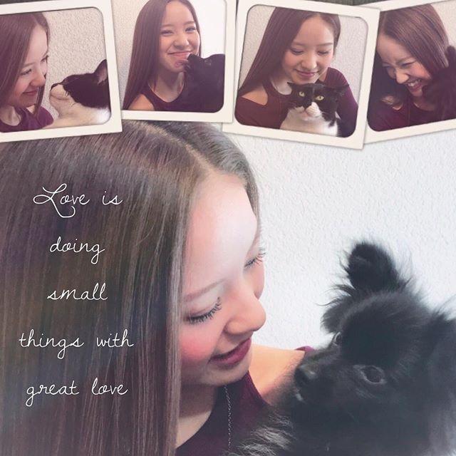 『大切な時こそ、肩の力を抜く』 最近、読んだ本 #心くばりの魔法 に書いてあったこと。 * #今日も1日がんばりました #ただいま #おかえり #ほっこりタイム * 小さいけど確かな幸せを大切にして暮らしたいな。自分自身に「間」をつくることも大切。。。 * * #癒し #愛犬 #愛猫 #おうち時間 #自分時間 #カスタマイズエブリデイ #追い込み期 #昇進会 #追い立てられて疲れてる今日でも貴重な人生の1ページなのかもしれない #愛読書 #志 #モチベーション #向上心 #心の充電 #料理教室の先生 #週末野心 #おてんば野心 #カメラ女子 #ポートレート部 #キリトリセカイ #instaphoto #l4l #f4f #instadiary