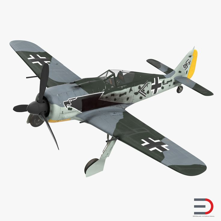 German WWII Fighter Aircraft FW 190