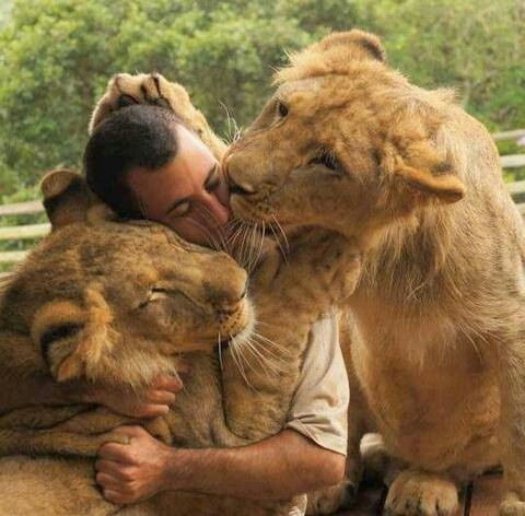 ='•'=Animals and humans at peace again the way Jehovah intended.