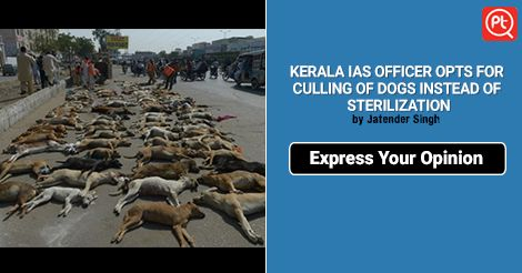 Be the voice of #voiceless - stop #dog culling #ShareYourOpinion Now - #Posticker