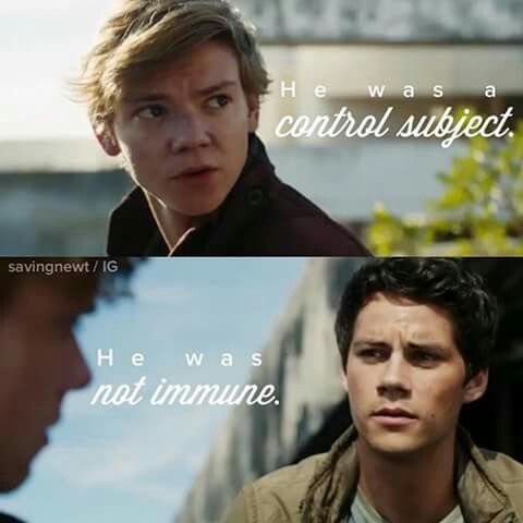 What the hell shall I say? Let's start of with Newt dies, that's great, not! hmm, next in the book Thomas shoots him. Boy I am the epoch of spoilers I gotta tell ya that