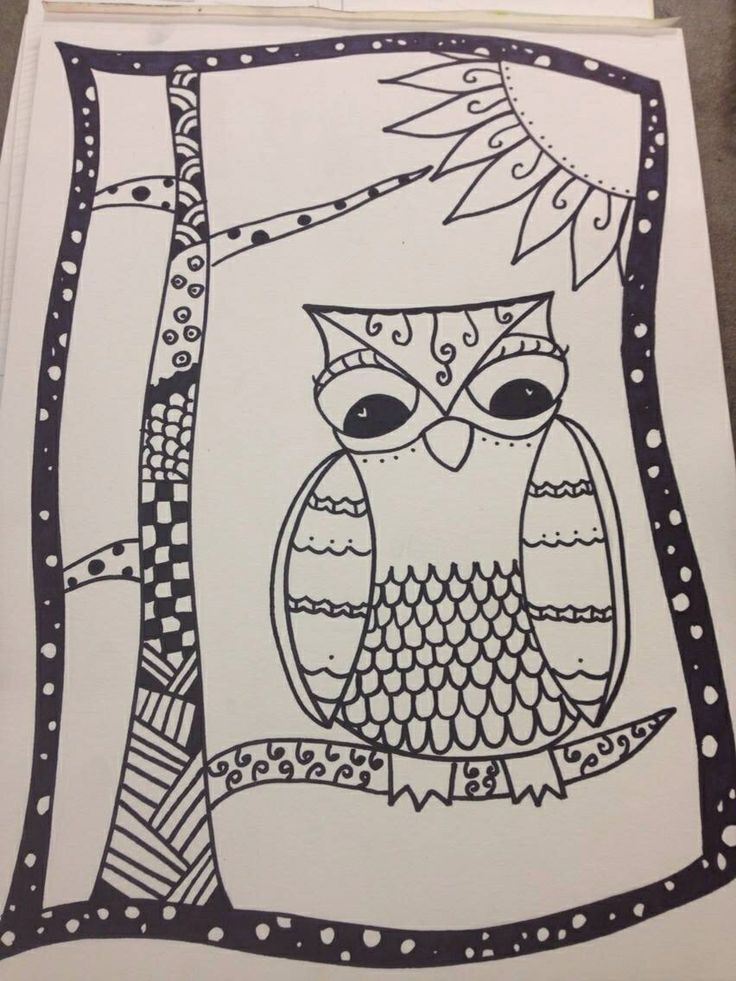 Zentangle owl easy for beginners the more complicated for Drawing patterns for beginners