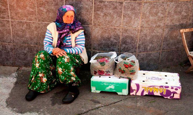 Больше 50 лет Мария Златич из Сербии не получала от мужа никаких вестей. Жила пожилая женщина на 100 долларов в месяц, коротая свои дни в маленьком домике в лесу. Но однажды ее скромная и спокойная жизнь была встревожена одной, казалось бы, немыслимой новостью.