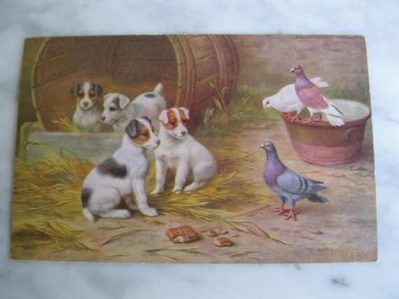 Antique Litho Postcard. Signed E. Hunt. Puppies and by grandma62