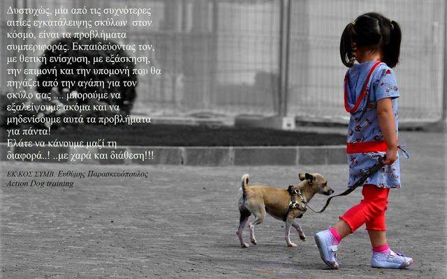 Εκπαίδευση Σκύλων Πάτρα Action Dog: Εγκατάληψη του σκύλου,εξ΄αιτίας ανεπυθήμητης συμπε...