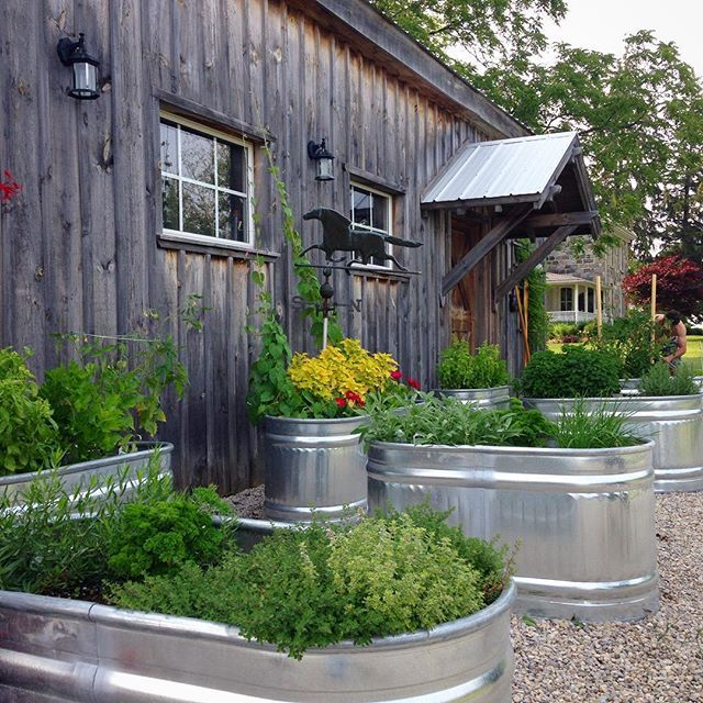 Restaurants and home cooking / kitchen gardens take note: This idea would make for a great restaurant herb garden for added curb appeal as well as fresh, organic food appeal too!