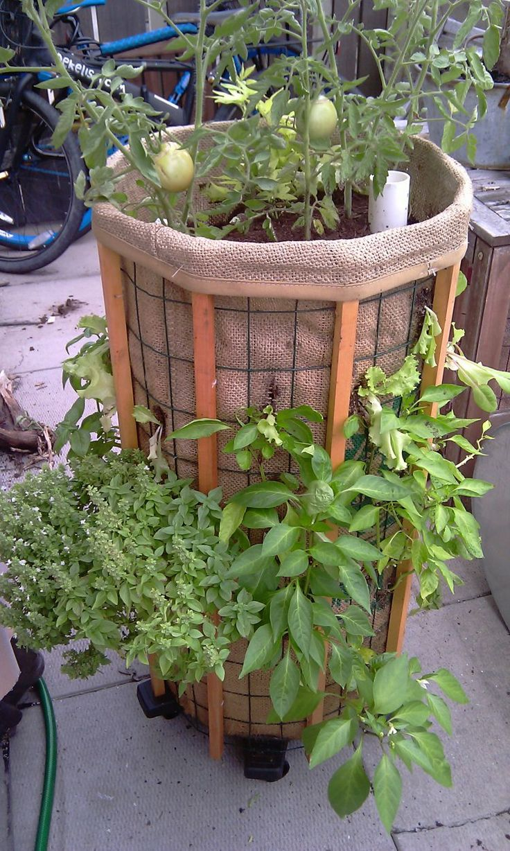 17 Best Images About Vertical Vegetable Garden On