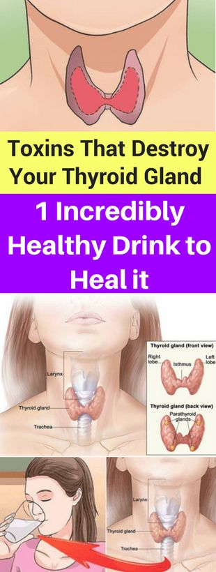 Toxins That Destroy Your Thyroid Gland and 1 Incredibly Healthy Drink to Heal it - seeking habit