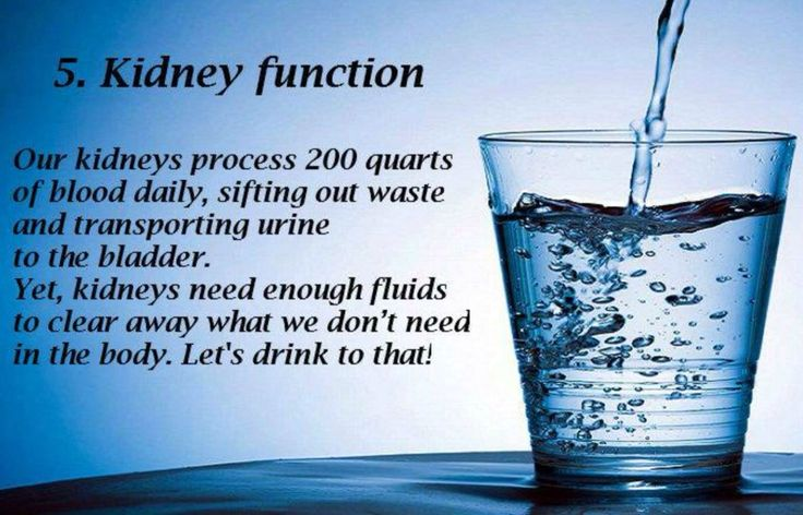 5. Kidney Function