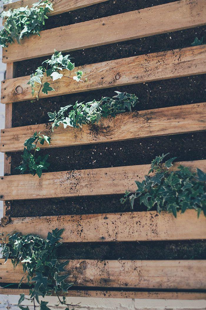 jardin vertical y huerto urbano cole-8