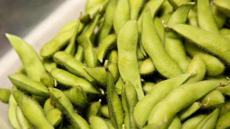 Edamame has been recalled in 33 states due to listeria concerns, the Food and Drug Administration (FDA) announced. Advanced Fresh Concepts Franchise Corp., the fresh sushi supplier based in Rancho …