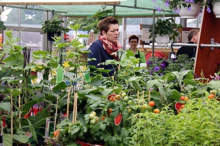 Er gaat een wereld open op zo n kijk ruik proef en for Gardeners supply burlington vt