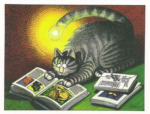 41 Best Klibans Kittens Images On Pinterest