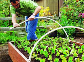 Following the Master Gardener: Making Floating Row Covers