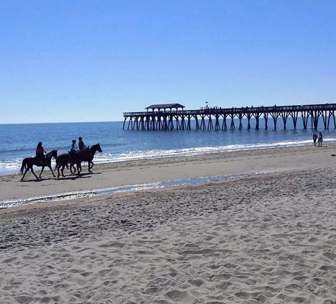 Myrtle Beach State Park | Equestrian Fun | Horseback Riding | Myrtle Beach | South Carolina