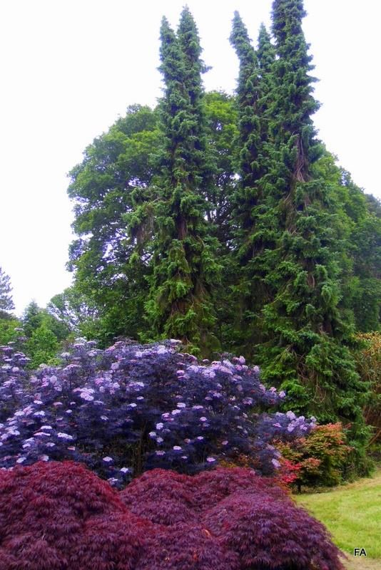 Mount Congreve Gardens, short drive from Waterford City Centre and the Granville Hotel