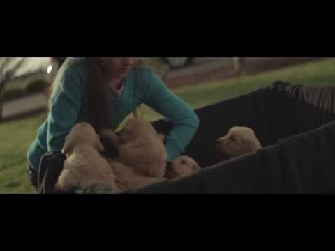 "2014 Chevy Commercial ""Maddie"" - Dominion Chevrolet Richmond, VA"